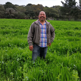 Javier in cover crop 1